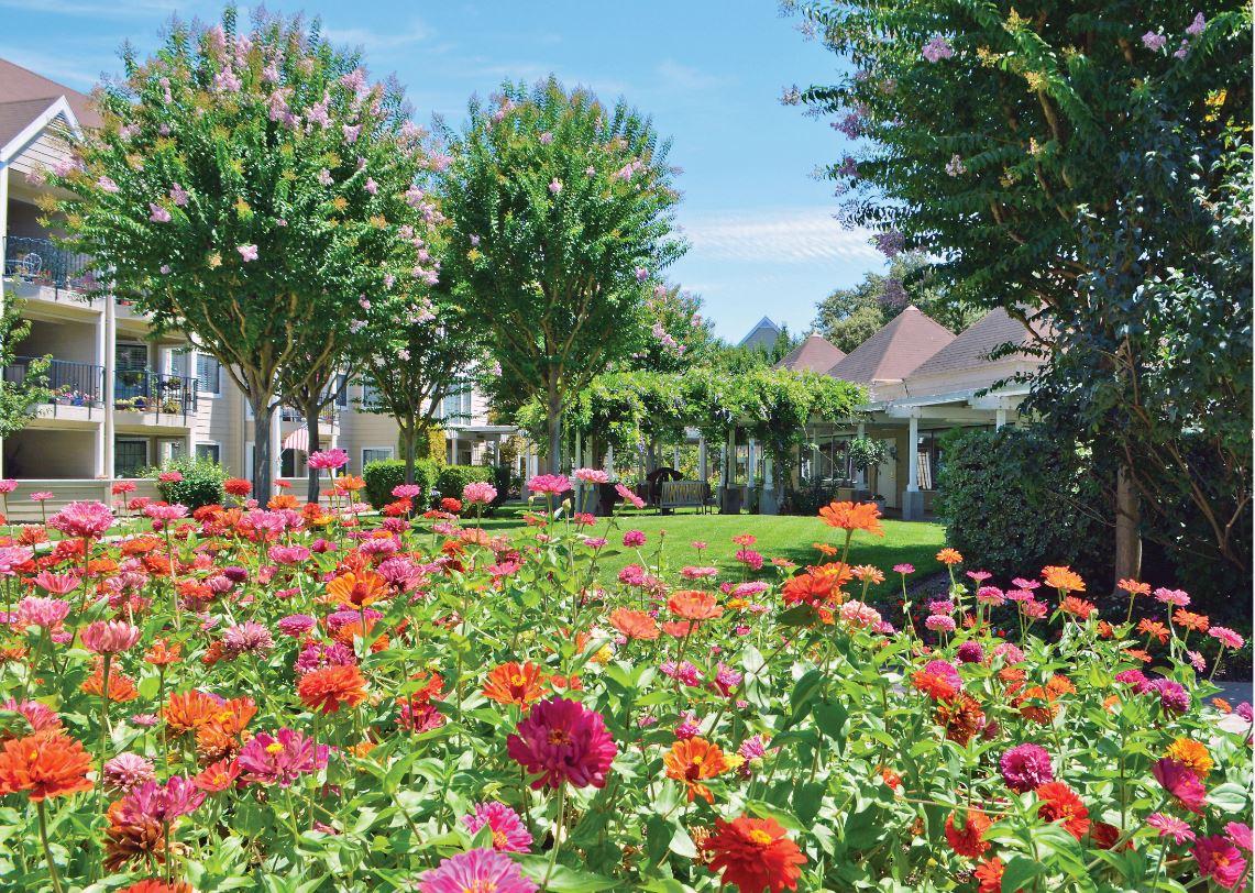 OCW-flower-garden
